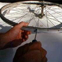 Replace Spokes in Bike Wheel Image