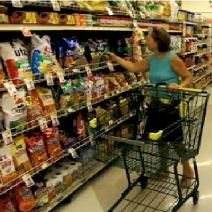 Grocery Shopping Image